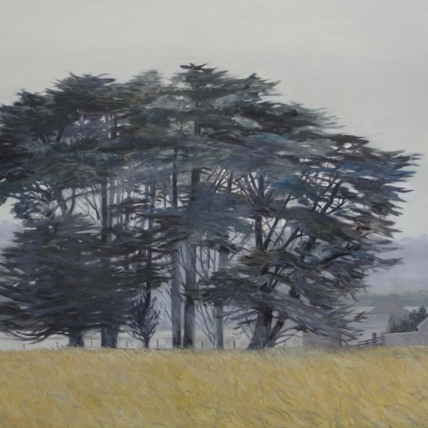 'Cypresses' J.Sisson Oil on Linen 153x92