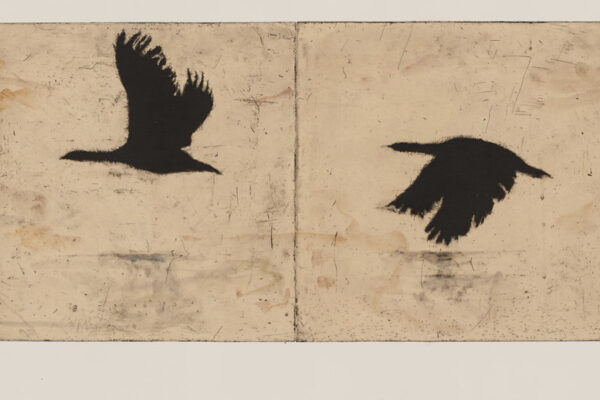 overflow, 44cm x 178cm etching with hand colouring $3,750 unframed 2